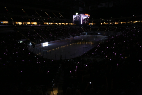 Pink in the Rink Raises Nearly $45,000!